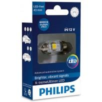 PHILIPS LED FEST 43mm 6000K 12V 1W