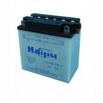 HAIJIU 12N9-4B-1
